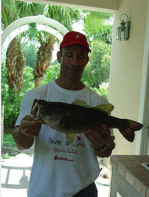 Freshwater bass fishing at the ever after estate near for Bass fishing disney world