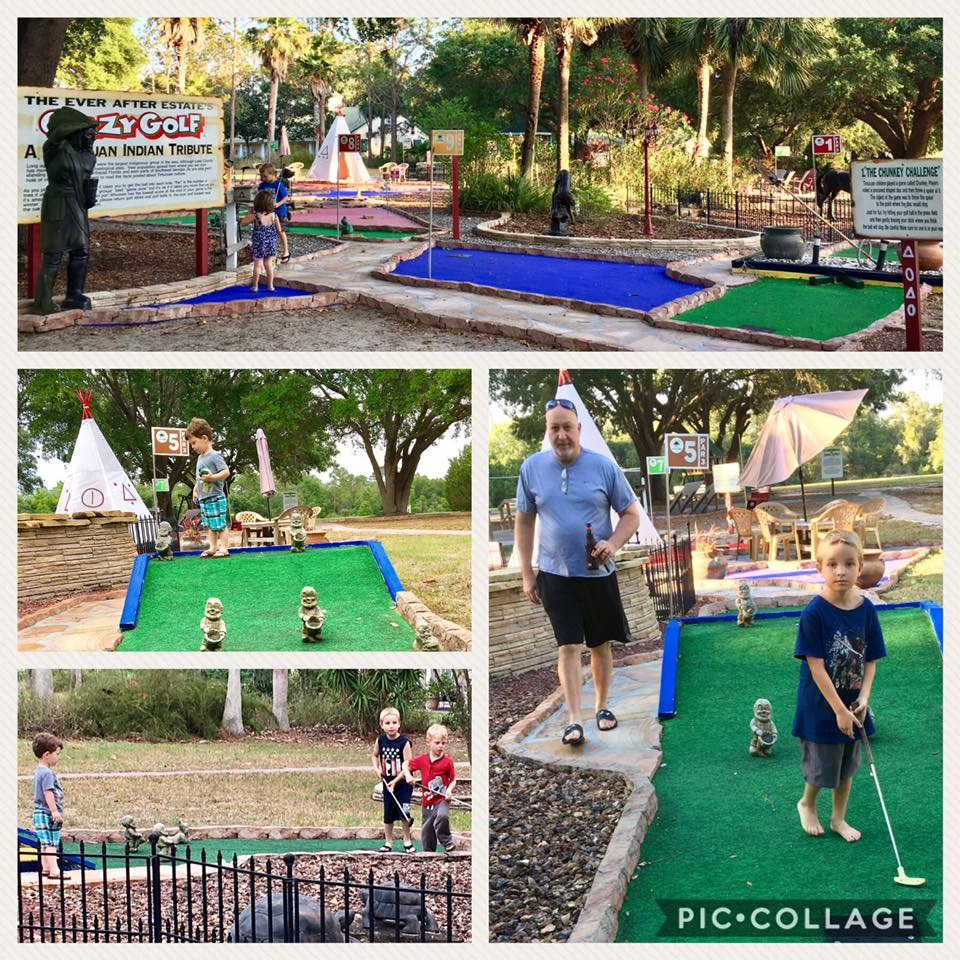 mini golf at home   put put